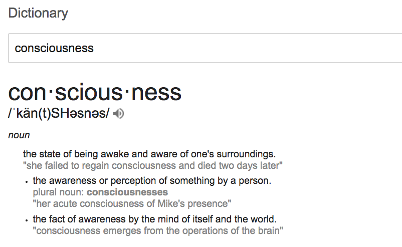Definition of Consciousness